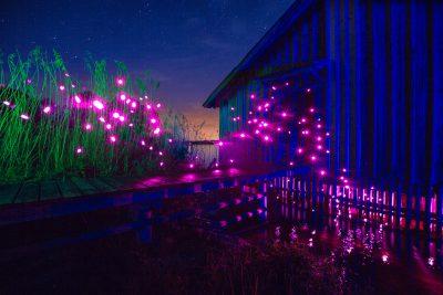 Pink Fireflies // Lightpainting, Ammersee, 2015, Gallery Print, 140 x 200 cm, 3.500,-
